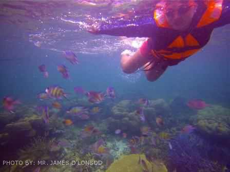 snorkeling at coral garden coron