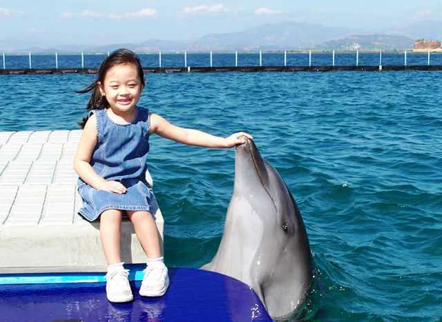 photos-with-dolphins-6